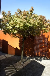 Drzewo WYZWOLENIE